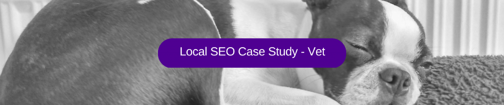 local seo for north west vet